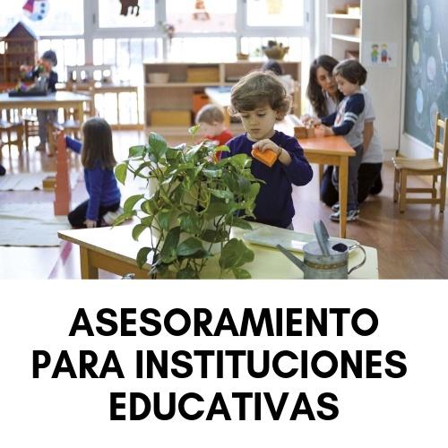 asesoramiento para instituciones educativas